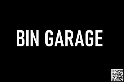 Bin Garage