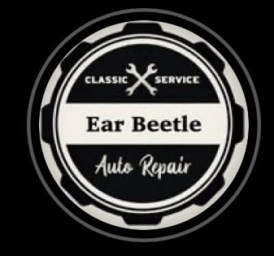 earbeetle.com.br